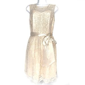 Tevolio Cream Lace Overlay Belted Cocktail Dress 8